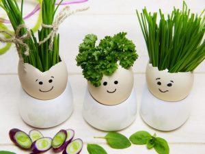 11 Cara Membuat Kerajinan Dari Kulit Telur Terlengkap